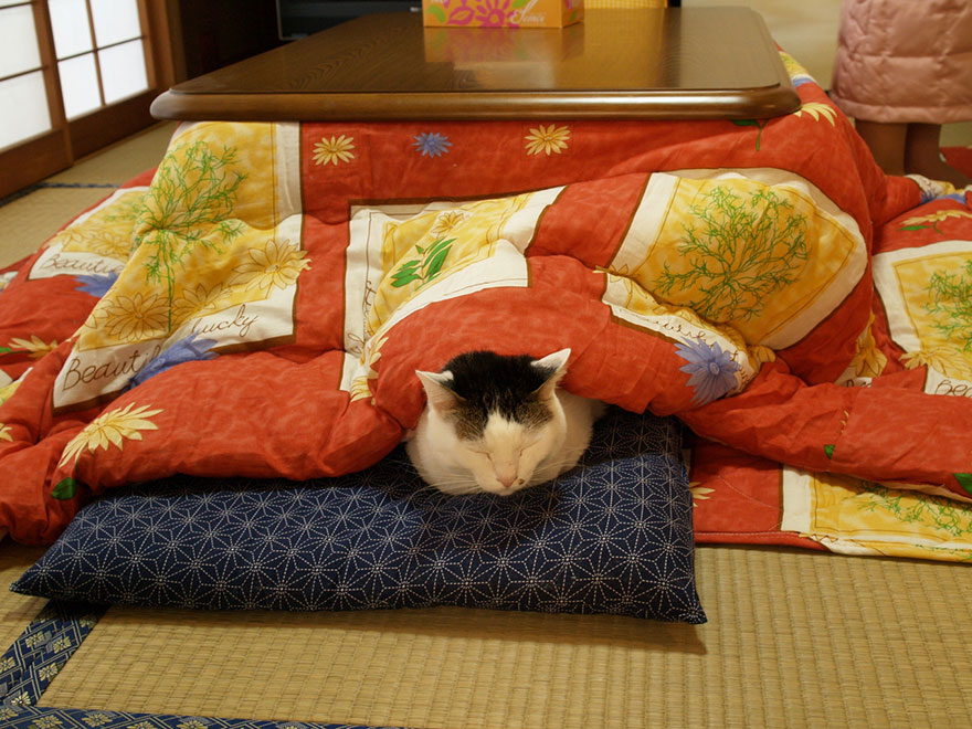 kotatsu-japanese-heating-bed-table_11